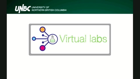 Thumbnail for entry CTLT Workshop - Approaches To Online Labs - June 11