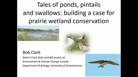 Thumbnail for entry Tales of ponds, pintails and swallows and the case for prairie wetland conservation - Dr. Bob Clark, Environment Canada and the University of Saskatchewan - March 28 2019